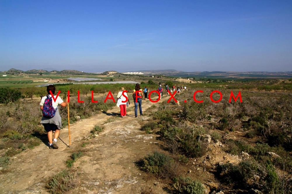 Plot of land for sale in an exclusive location, Las Comunicaciones, San Miguel de Salinas.
