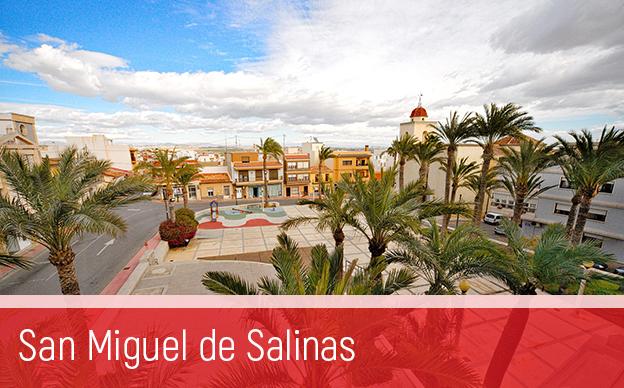 Сан Мигел де Салинас